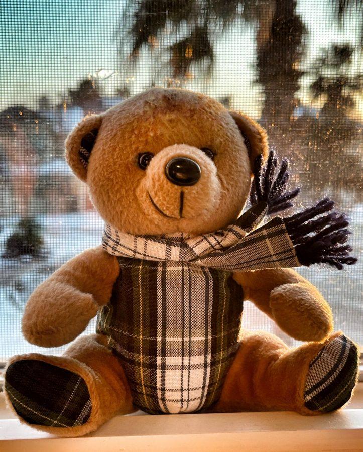 Official Village Teddy Bear
