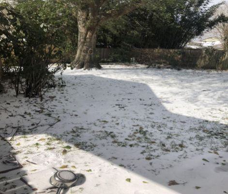 A snow-covered backyard in Texas after the winter storm hit.